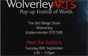 Wolverley Arts - Meet the Authors